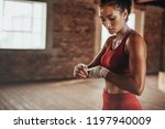 healthy young female boxer... | Shutterstock . vector #1197940009