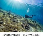 egypt dahab red seascuba diving | Shutterstock . vector #1197953533