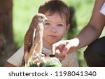 child boy with wounded lesser... | Shutterstock . vector #1198041340
