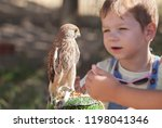 child boy with wounded lesser... | Shutterstock . vector #1198041346