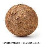 fresh ripe coconut fruits... | Shutterstock . vector #1198053316