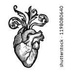 decorative naturalistic heart...   Shutterstock .eps vector #1198080640