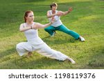 group of people practice tai... | Shutterstock . vector #1198119376