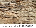 shot of wooden textured... | Shutterstock . vector #1198188130