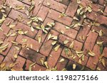 dry leaves on bright of red... | Shutterstock . vector #1198275166