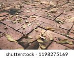 dry leaves on bright of red... | Shutterstock . vector #1198275169