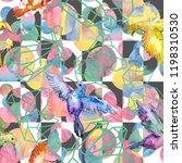 sky bird colorful colibri in a... | Shutterstock . vector #1198310530