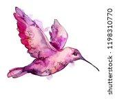 sky bird pink colibri in a... | Shutterstock . vector #1198310770