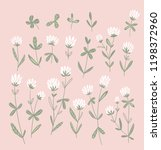 white clover flowers isolated... | Shutterstock .eps vector #1198372960