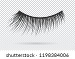 feminine lashes . false... | Shutterstock . vector #1198384006