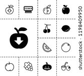 fruit icon. collection of 13... | Shutterstock .eps vector #1198409950