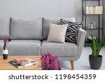 plant next to grey settee with... | Shutterstock . vector #1198454359