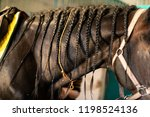 horse mane filled in braids.... | Shutterstock . vector #1198524136