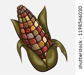 Autumn Color Indian Corn