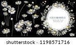 floral wreath. chamomile... | Shutterstock . vector #1198571716
