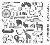 hunting equipment and wild...   Shutterstock .eps vector #1198666510