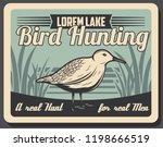 hunting open season for wild... | Shutterstock .eps vector #1198666519
