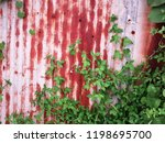 rusty zinc fence with plants ... | Shutterstock . vector #1198695700