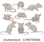 flat vector set of mouse in... | Shutterstock .eps vector #1198705006