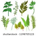 flat vector set of different... | Shutterstock .eps vector #1198705123