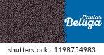 beluga caviar banner in cartoon ...   Shutterstock .eps vector #1198754983