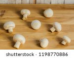 background champignon mushrooms ...   Shutterstock . vector #1198770886