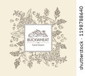 background with buckwheat ... | Shutterstock .eps vector #1198788640