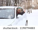 Stock photo portrait of car driver with smile santa hat and thumb up through car window on the road winter 1198794883