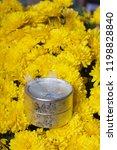 autumn flowers in a pot. yellow ...   Shutterstock . vector #1198828840