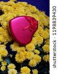 autumn flowers in a pot. yellow ...   Shutterstock . vector #1198839430