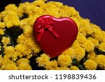 autumn flowers in a pot. yellow ...   Shutterstock . vector #1198839436