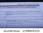fragment of immigrant petition... | Shutterstock . vector #1198845310