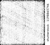 grunge texture black and white   Shutterstock .eps vector #1198865746