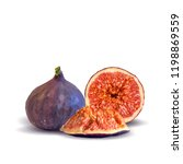 fresh  nutritious  tasty figs.... | Shutterstock .eps vector #1198869559