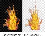 two translucent burning...   Shutterstock .eps vector #1198902610