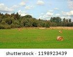 stacks of straw   bales of hay  ... | Shutterstock . vector #1198923439