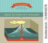 vector infographic   cross... | Shutterstock .eps vector #119893078