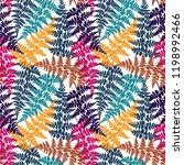 fern frond herbs  tropical... | Shutterstock .eps vector #1198992466