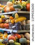 different pumpkins on city... | Shutterstock . vector #1199032600