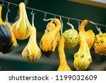 different pumpkins on city... | Shutterstock . vector #1199032609