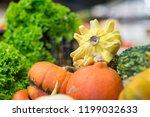 different pumpkins on city... | Shutterstock . vector #1199032633
