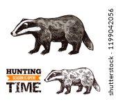 badger animal sketch  hunting... | Shutterstock .eps vector #1199042056