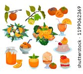 persimmon vector fresh fruity... | Shutterstock .eps vector #1199062369