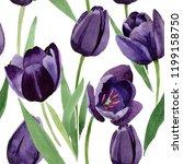 watercolor black tulips flower. ... | Shutterstock . vector #1199158750