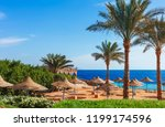 sunny resort beach with palm... | Shutterstock . vector #1199174596