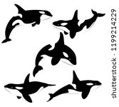 killer whale set of silhouettes ... | Shutterstock . vector #1199214229