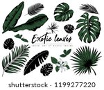 Tropical Leaves Collection....