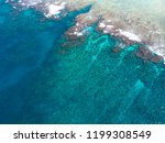 coral reef sea blue | Shutterstock . vector #1199308549
