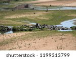 panorama and wildlife on the... | Shutterstock . vector #1199313799