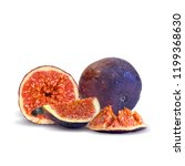 fresh  nutritious  tasty figs.... | Shutterstock .eps vector #1199368630